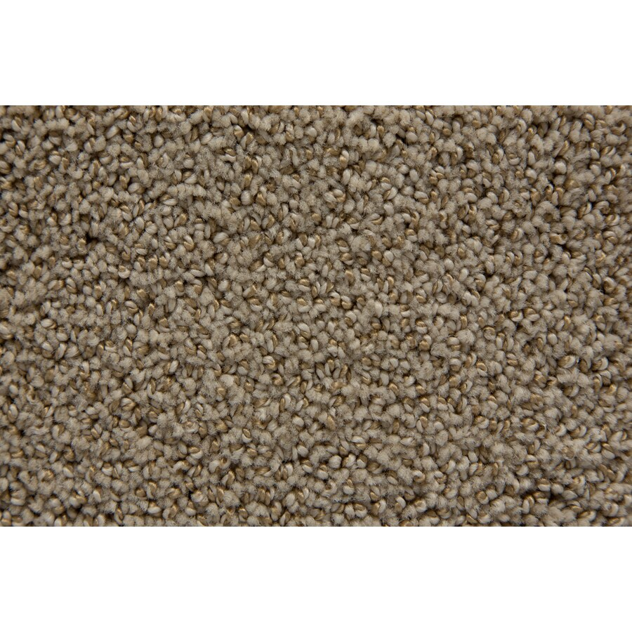 STAINMASTER TruSoft Mixology Chalk Pattern Indoor Carpet