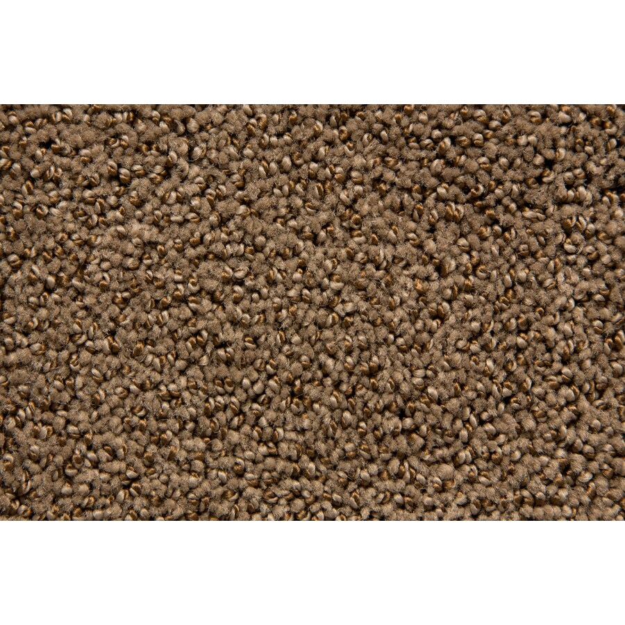 STAINMASTER TruSoft Mixology Buckskin Pattern Indoor Carpet
