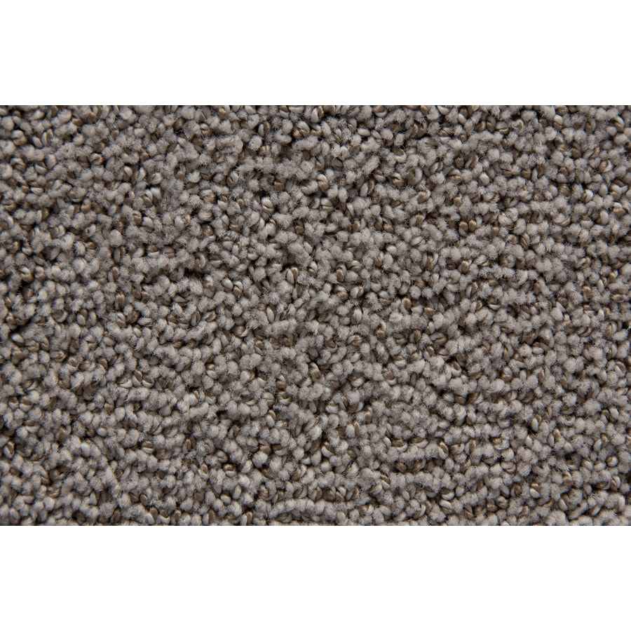 STAINMASTER TruSoft Mixology Colonial Pattern Indoor Carpet