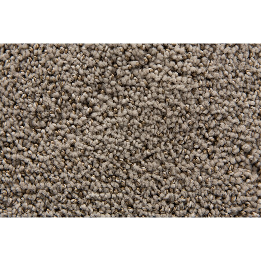 STAINMASTER TruSoft Mixology Platinum Pattern Indoor Carpet