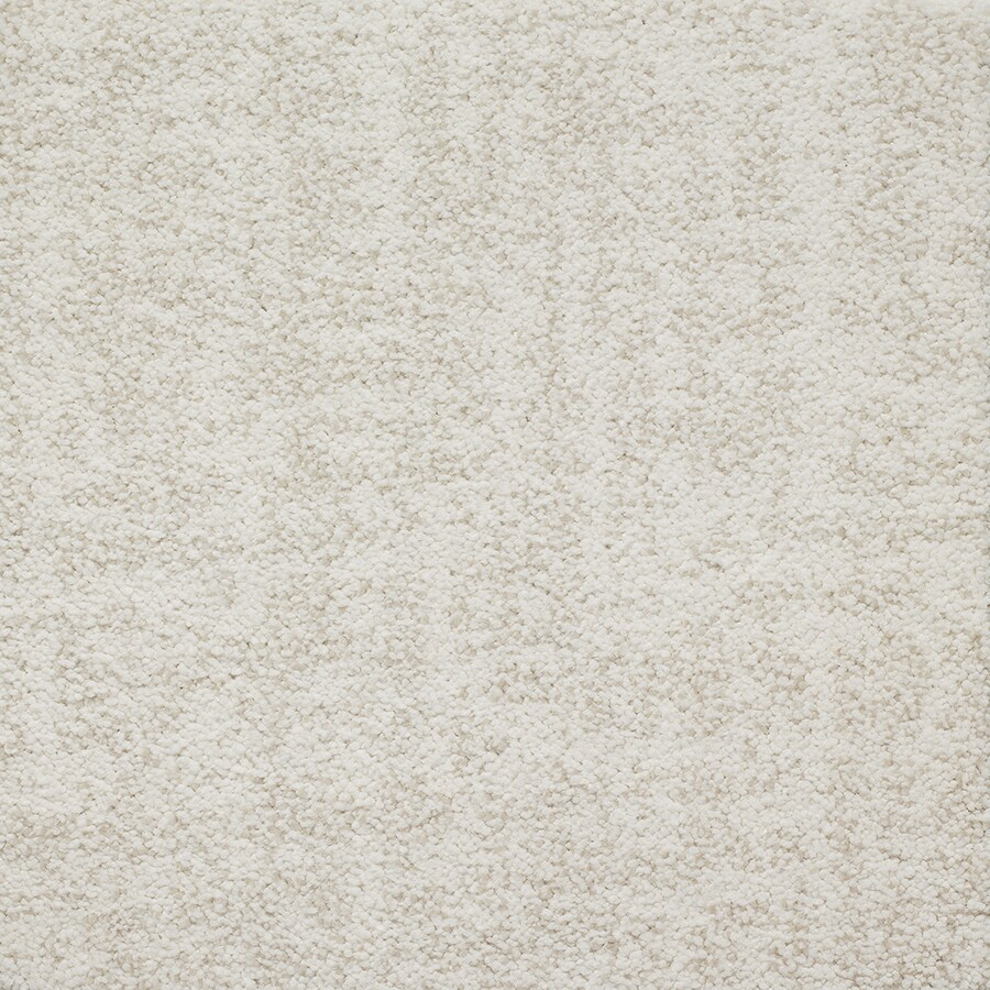 STAINMASTER TruSoft Espree Chantilly Pattern Indoor Carpet