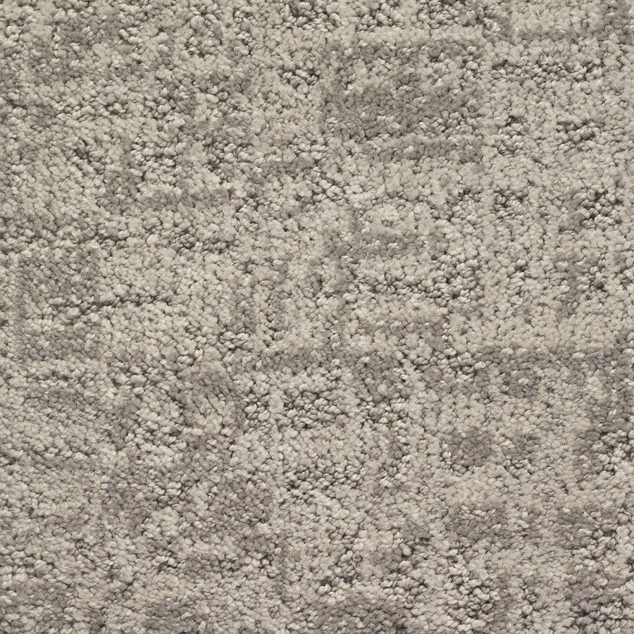 STAINMASTER PetProtect Duke Barkley Pattern Indoor Carpet