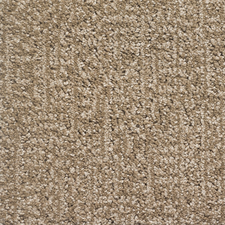 STAINMASTER PetProtect Duchess Rover Pattern Indoor Carpet