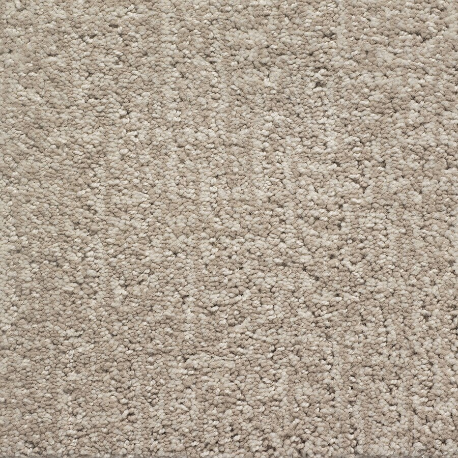 STAINMASTER PetProtect Duchess Toto Pattern Indoor Carpet