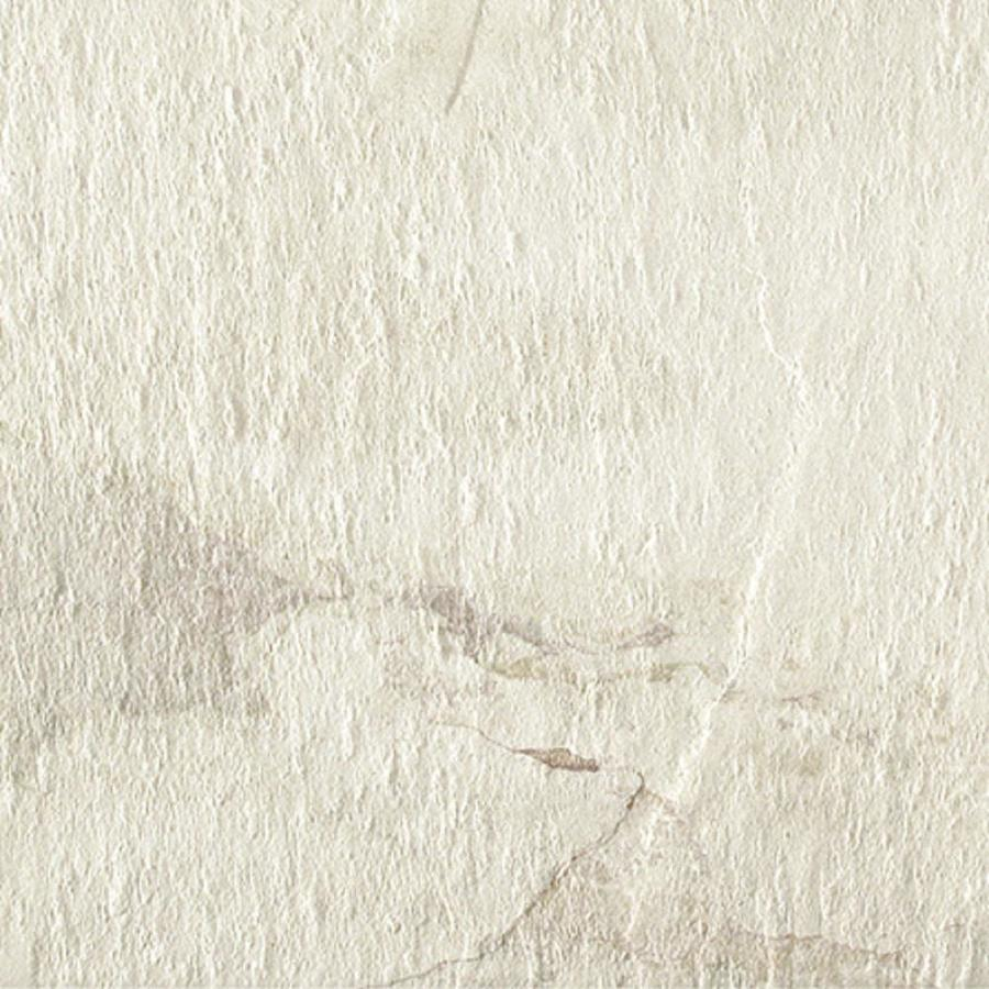 Style Selections Ivetta White Porcelain Floor and Wall Tile (Common: 6-in x 6-in; Actual: 5.8-in x 5.8-in)