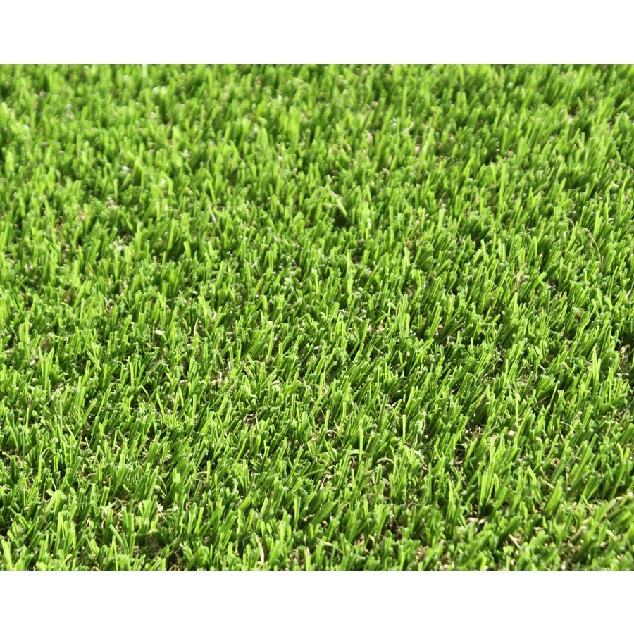 Smart Turf Bayside 12-ft Wide x Your Length Bermuda Artificial Grass