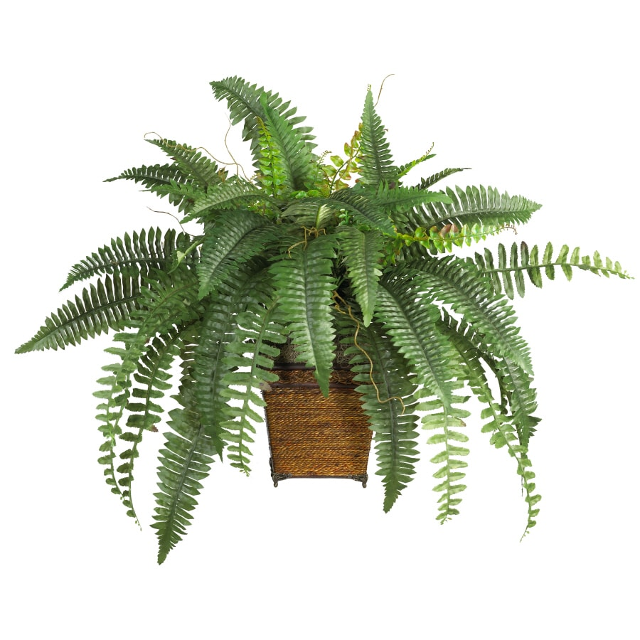 Nearly Natural 23-in Green Boston Fern