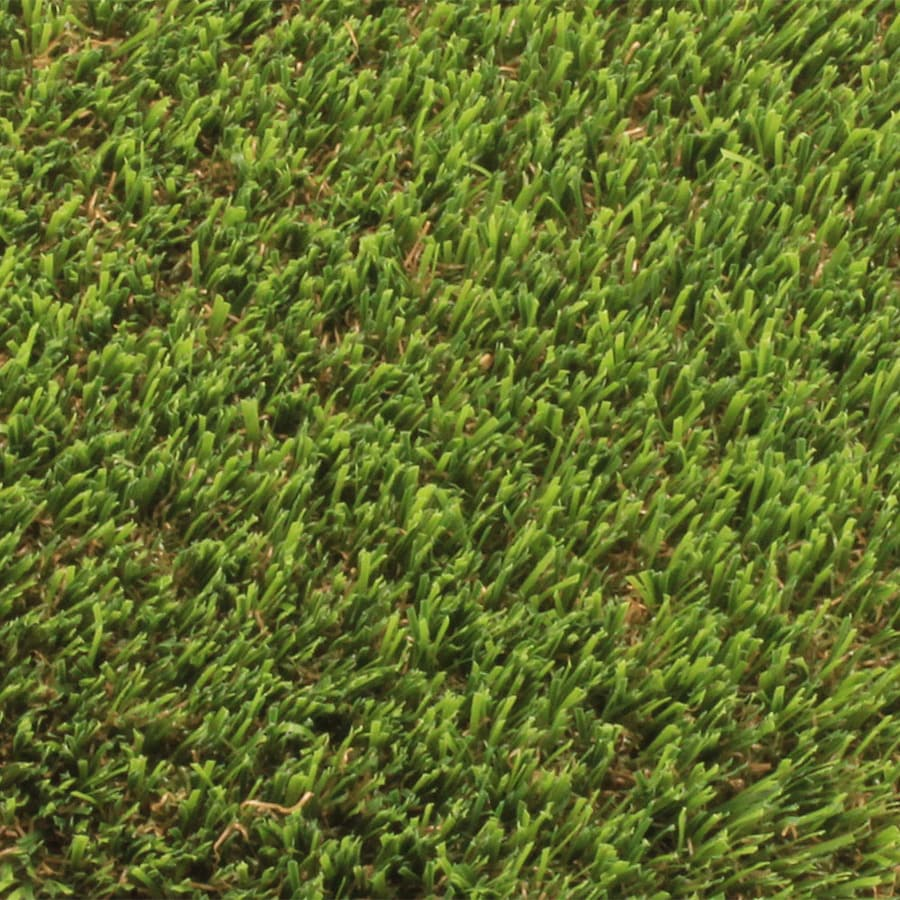 Shop Synlawn Ultralush Platinum 15 Ft Wide Cut To Length