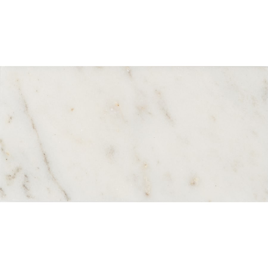 Anatolia Tile 8-Pack Venatino Polished Subway Marble Wall Tile (Common: 3-in x 6-in; Actual: 2.95-in x 5.9-in)