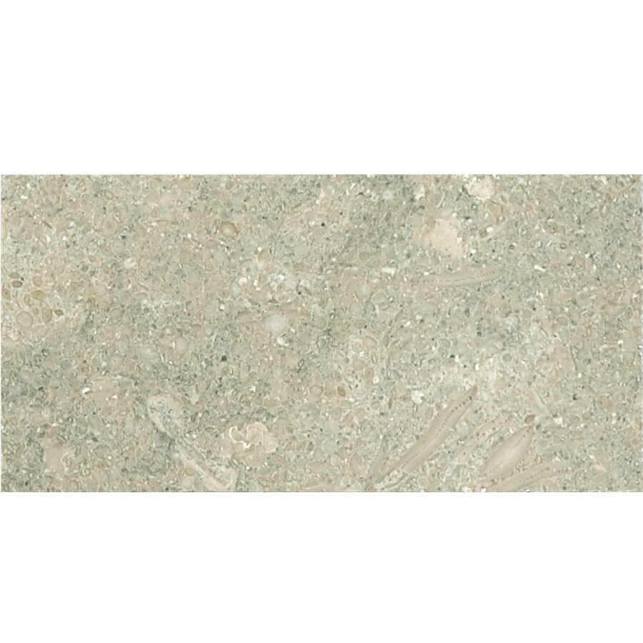 Anatolia Tile 44-Pack Seagrass Honed Limestone Floor and Wall Tile (Common: 3-in x 6-in; Actual: 2.95-in x 5.98-in)