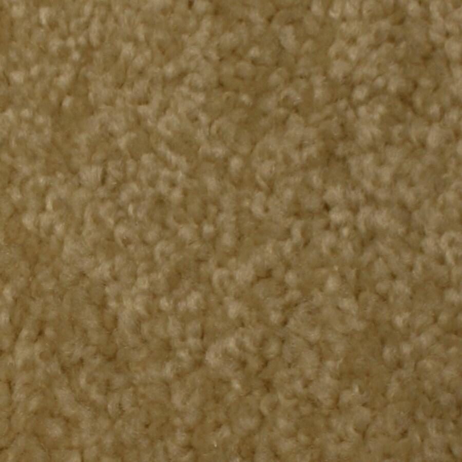 Shop STAINMASTER Solarmax Meadow Brook Patience Textured Indoor Carpet