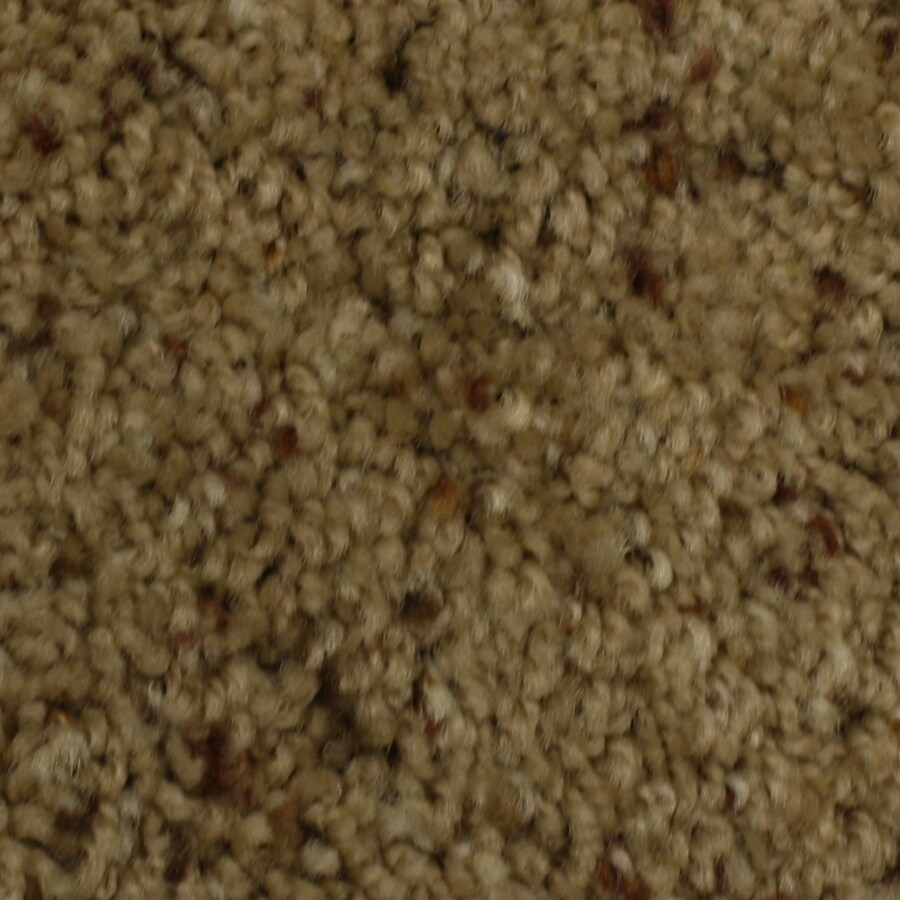 STAINMASTER Solarmax Barefoot Manor Admiring Frieze Indoor Carpet