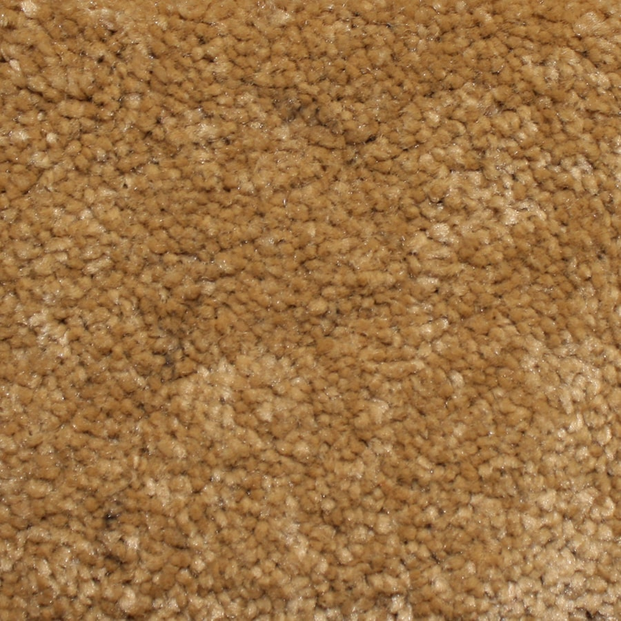 Looptex Mills Rush Landing Beige Cut Pile Indoor Carpet