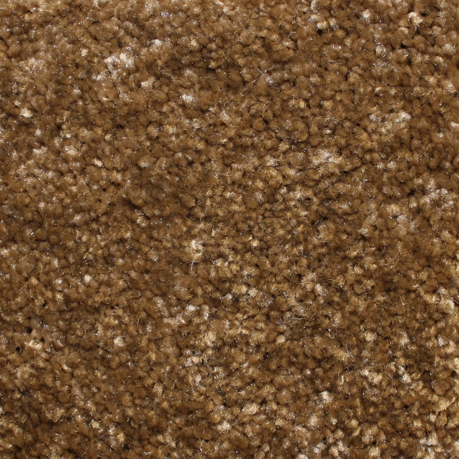 Looptex Mills Barely Rustic Brown Cut Pile Indoor Carpet