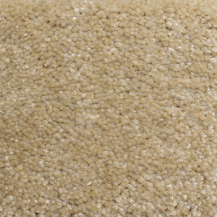 Looptex Mills Barely Rustic Cream Cut Pile Indoor Carpet