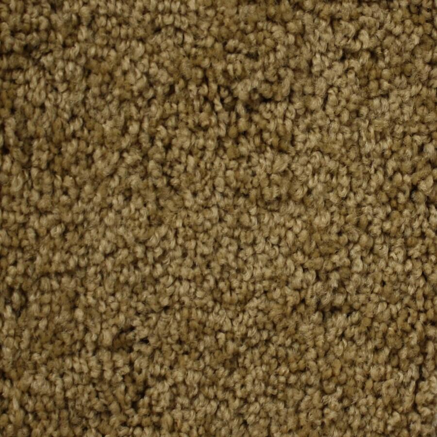 Looptex Mills Essentials Nitro Brown Textured Indoor Carpet