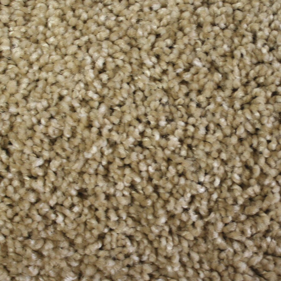 STAINMASTER Essentials Notorious Desperado Textured Indoor Carpet