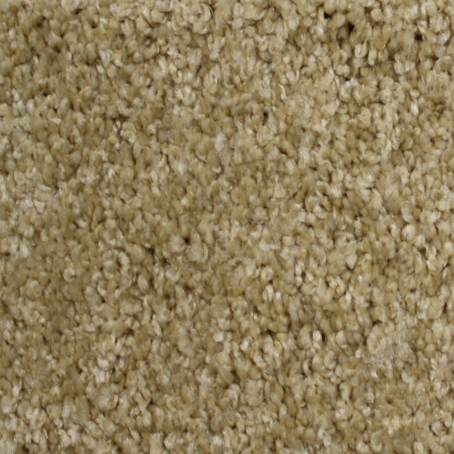 STAINMASTER Essentials Notorious Eldorado Textured Indoor Carpet