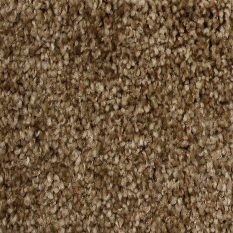 Shop stainmaster essentials notorious delamar textured for Stainmaster carpet