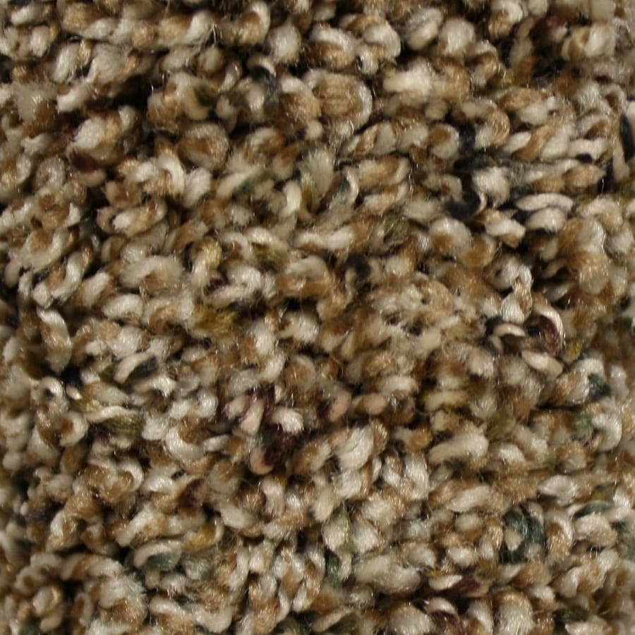STAINMASTER Essentials Briley Chipstead Textured Indoor Carpet