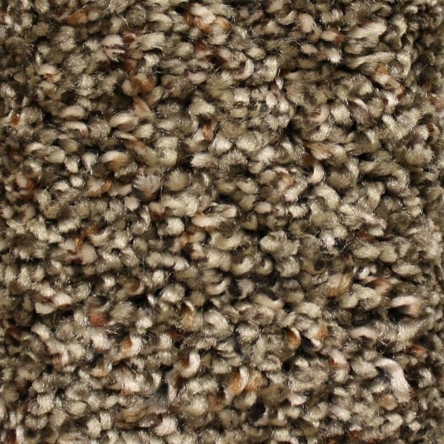 STAINMASTER Essentials Valmeyer Main Ticket Textured Indoor Carpet