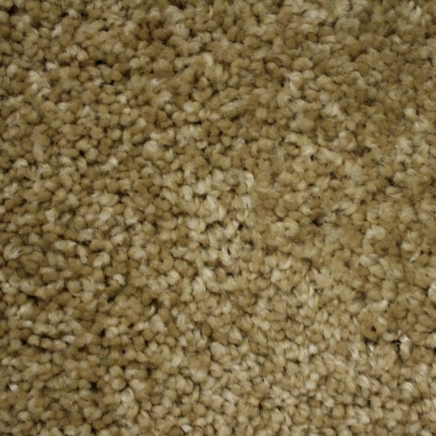 Phenix Cornerstone Summer Dune Textured Indoor Carpet