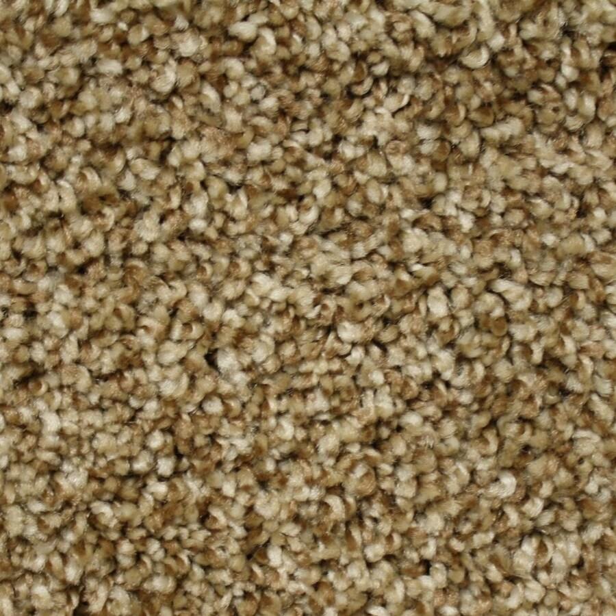 Phenix Cornerstone Rocky Path Textured Indoor Carpet