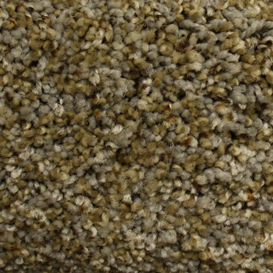STAINMASTER PetProtect Lexington Ridge Run Textured Indoor Carpet