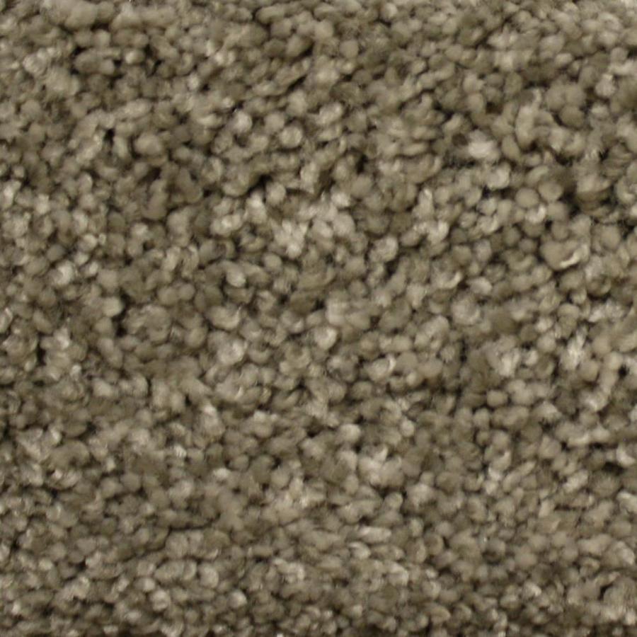 STAINMASTER PetProtect Lexington Millspring Textured Indoor Carpet