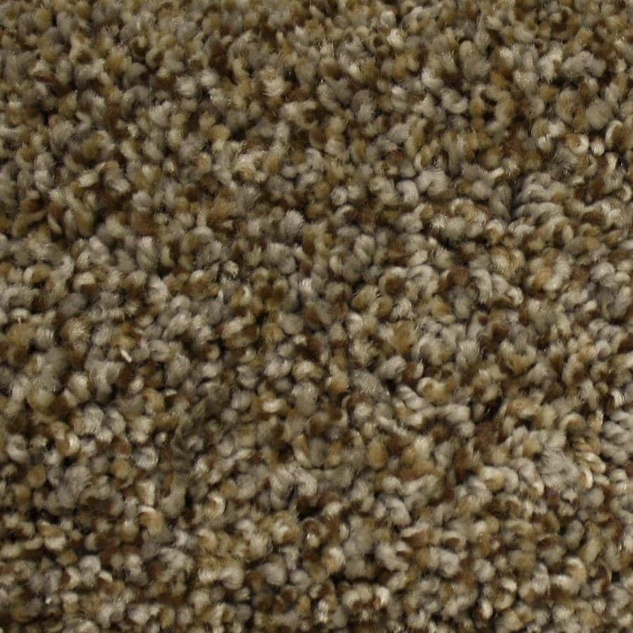 STAINMASTER PetProtect Lexington Top Elevation Textured Indoor Carpet