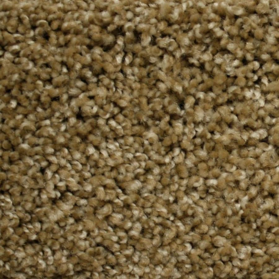 STAINMASTER PetProtect Georgetown World Class Textured Indoor Carpet