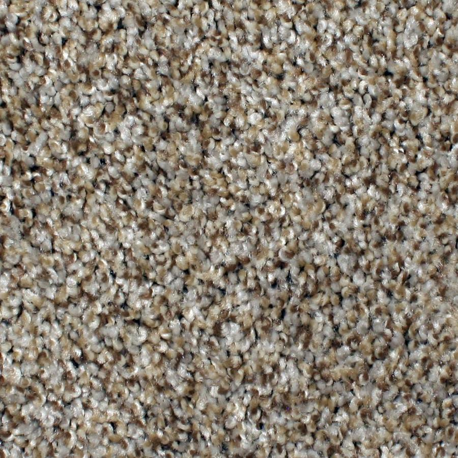 STAINMASTER PetProtect Concord Mystical Charm Textured Indoor Carpet