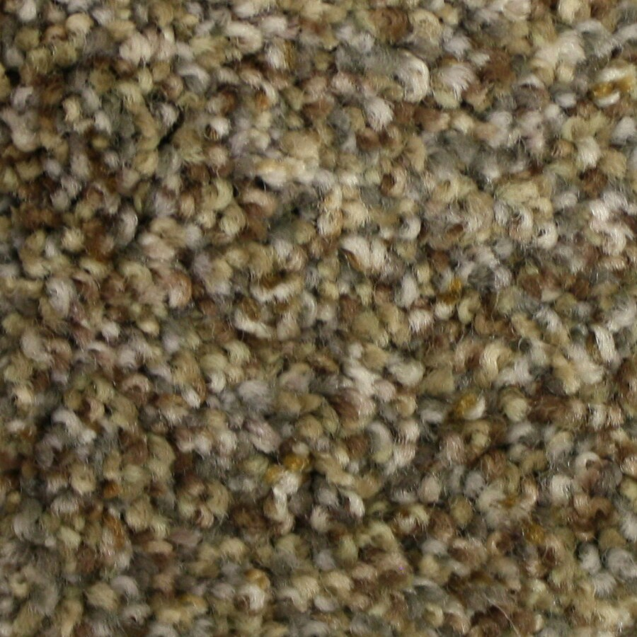STAINMASTER PetProtect Side Kick Rare Find Textured Indoor Carpet