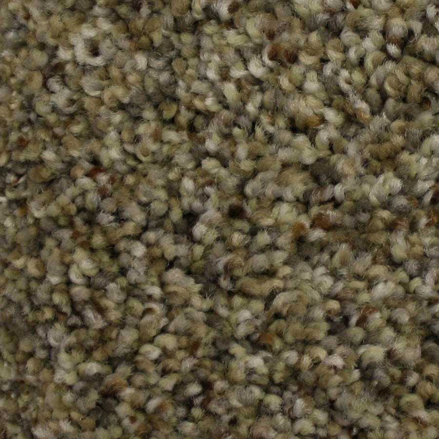 STAINMASTER PetProtect Companion Mentor Textured Indoor Carpet