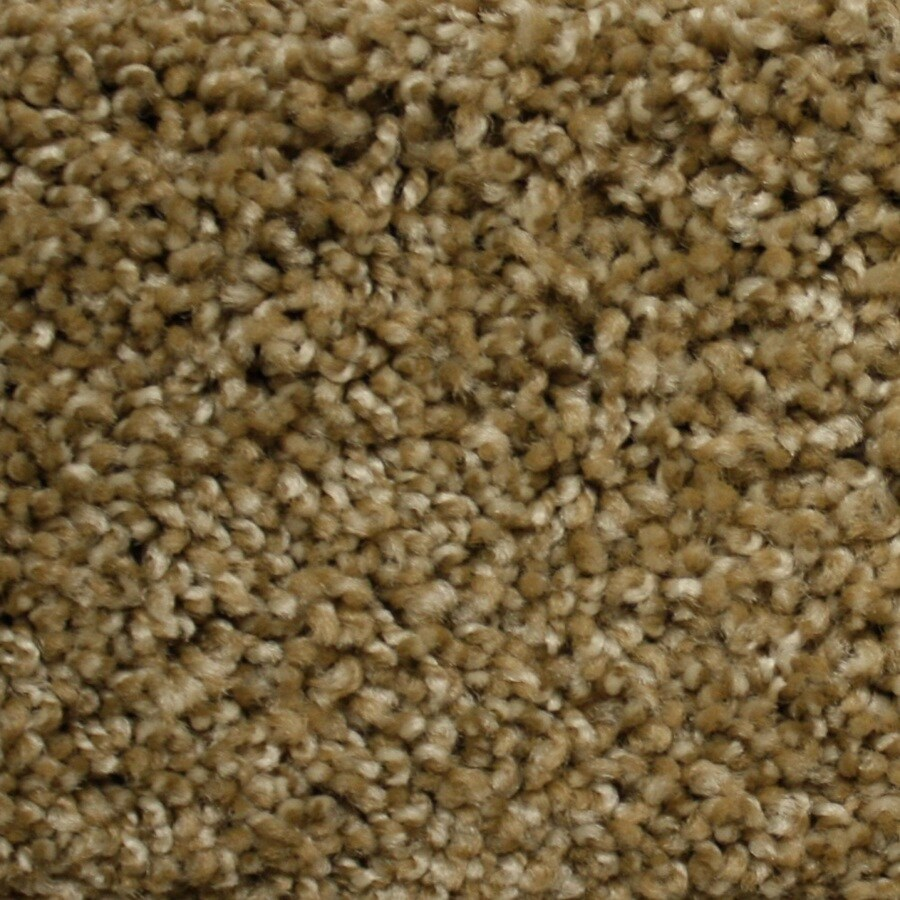 STAINMASTER PetProtect Georgetown Express World Class Textured Indoor Carpet