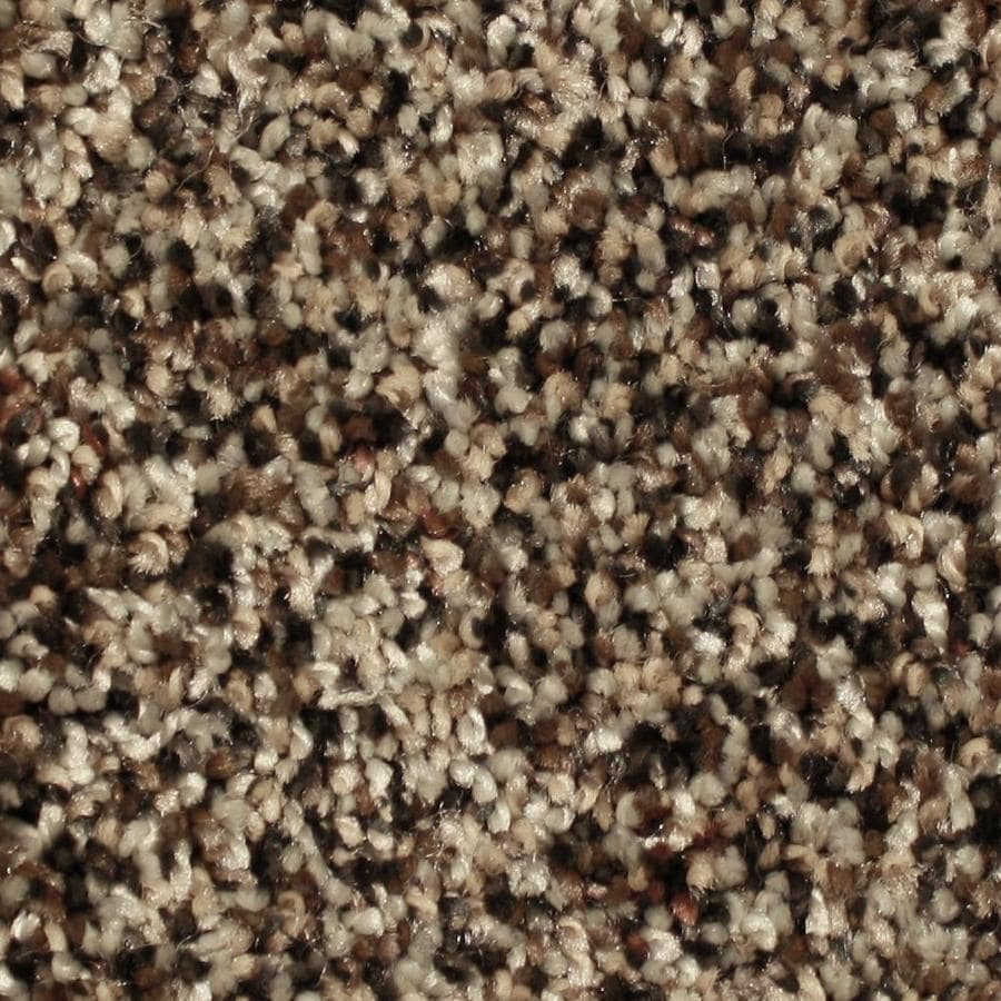 STAINMASTER Essentials Channing Moving Wave Textured Indoor Carpet