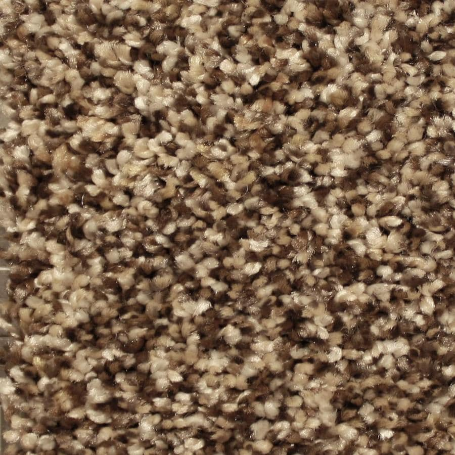 STAINMASTER Essentials Channing Spotlight Textured Indoor Carpet