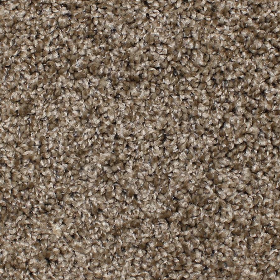STAINMASTER Essentials Conway Desert Wildlife Textured Indoor Carpet