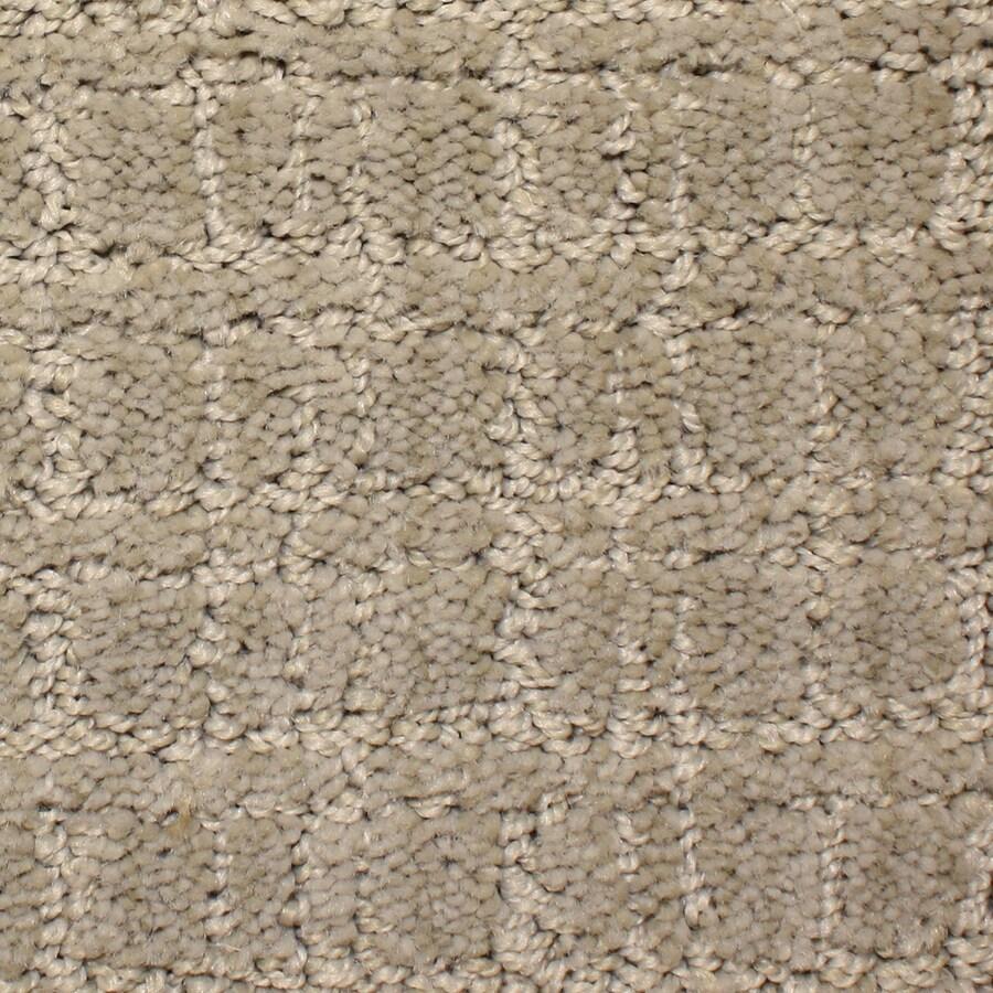 STAINMASTER PetProtect Park Lane Carven Cut and Loop Indoor Carpet