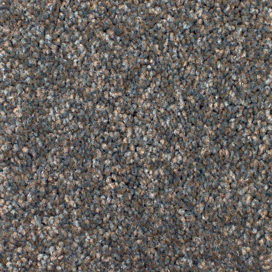 STAINMASTER PetProtect Briarcliffe Hills Antique Textured Indoor Carpet