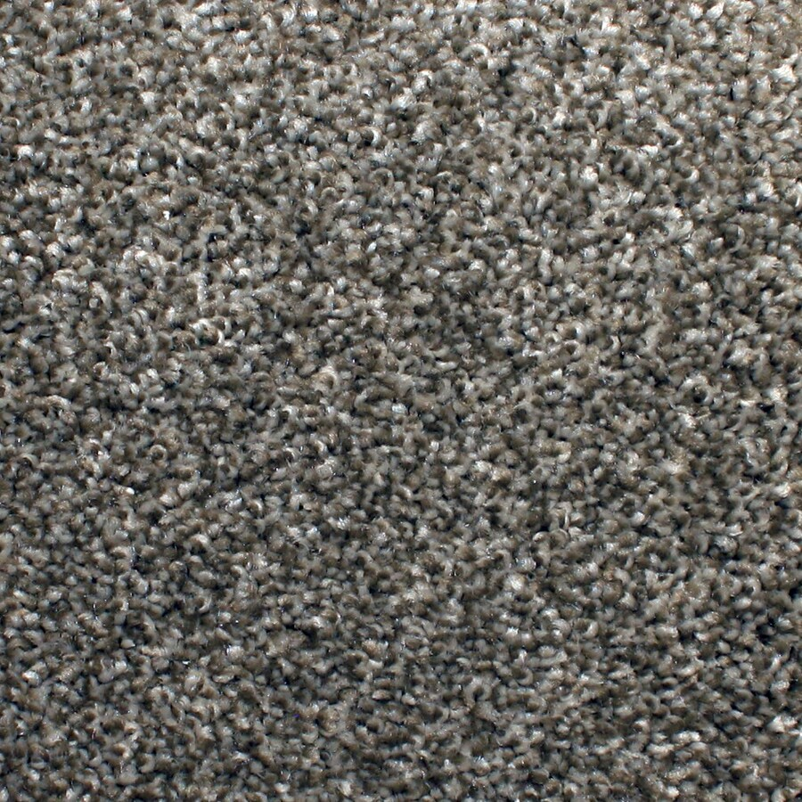 STAINMASTER PetProtect Briarcliffe Hills Filigree Textured Indoor Carpet