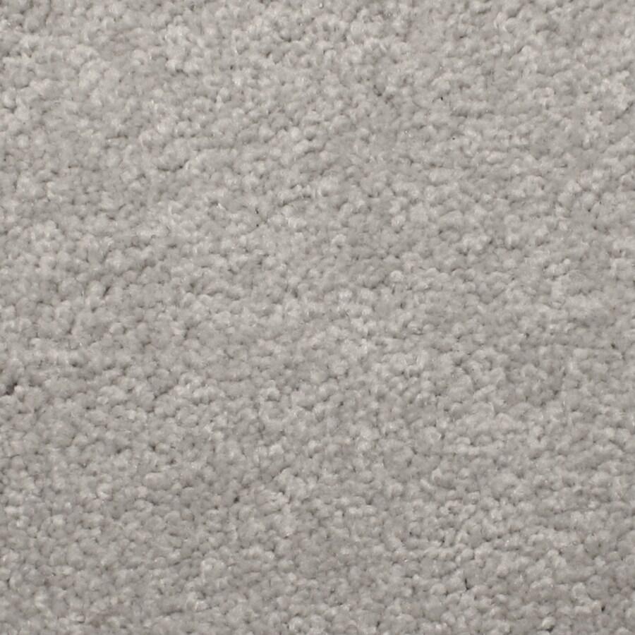 STAINMASTER PetProtect Briarcliffe Hills Vintage Textured Indoor Carpet