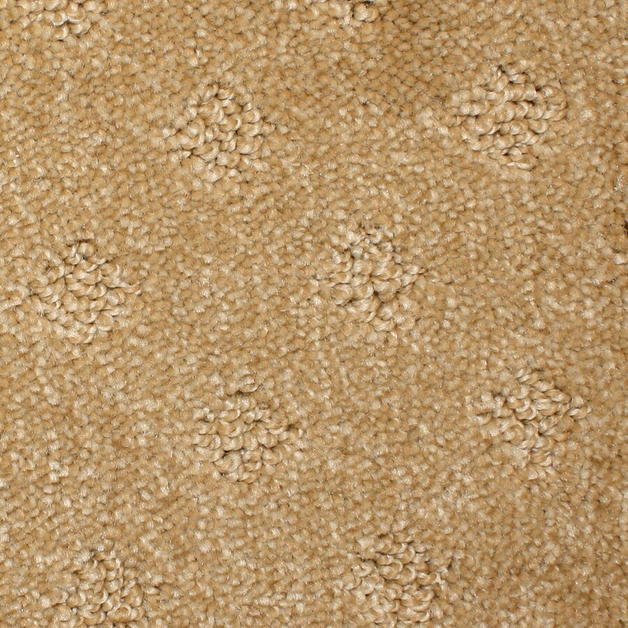 STAINMASTER PetProtect Spring Hope Hickory Cut and Loop Indoor Carpet