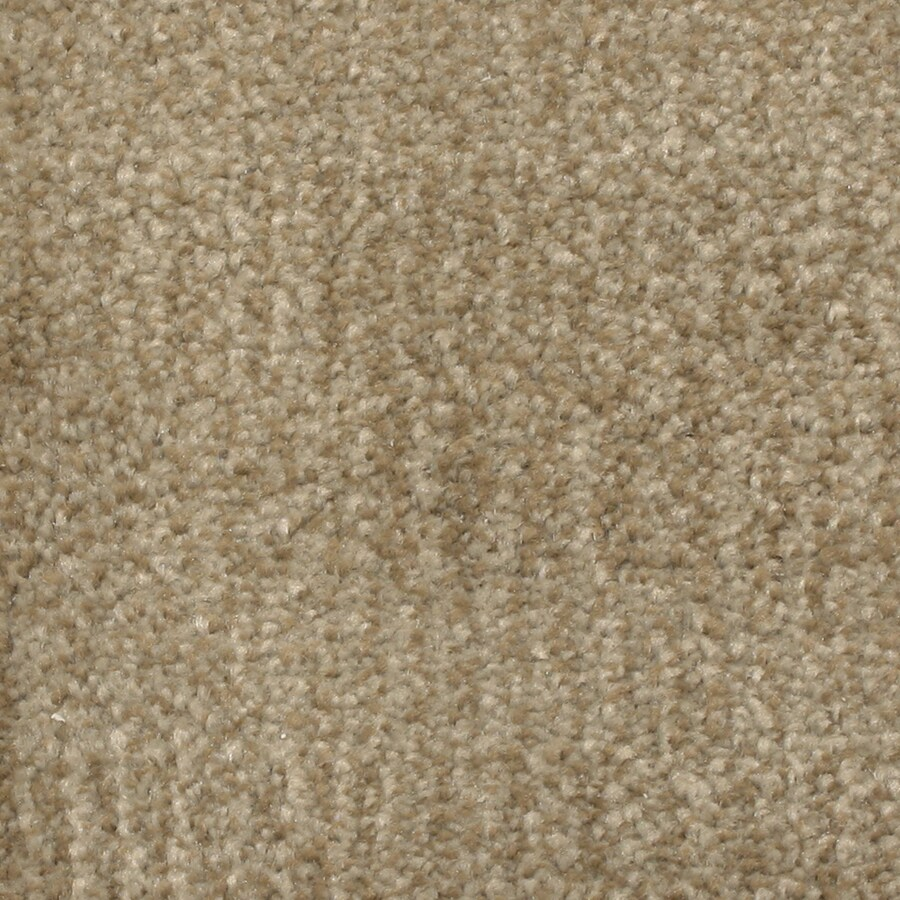 STAINMASTER PetProtect Pilot Point Inlet Pattern Indoor Carpet