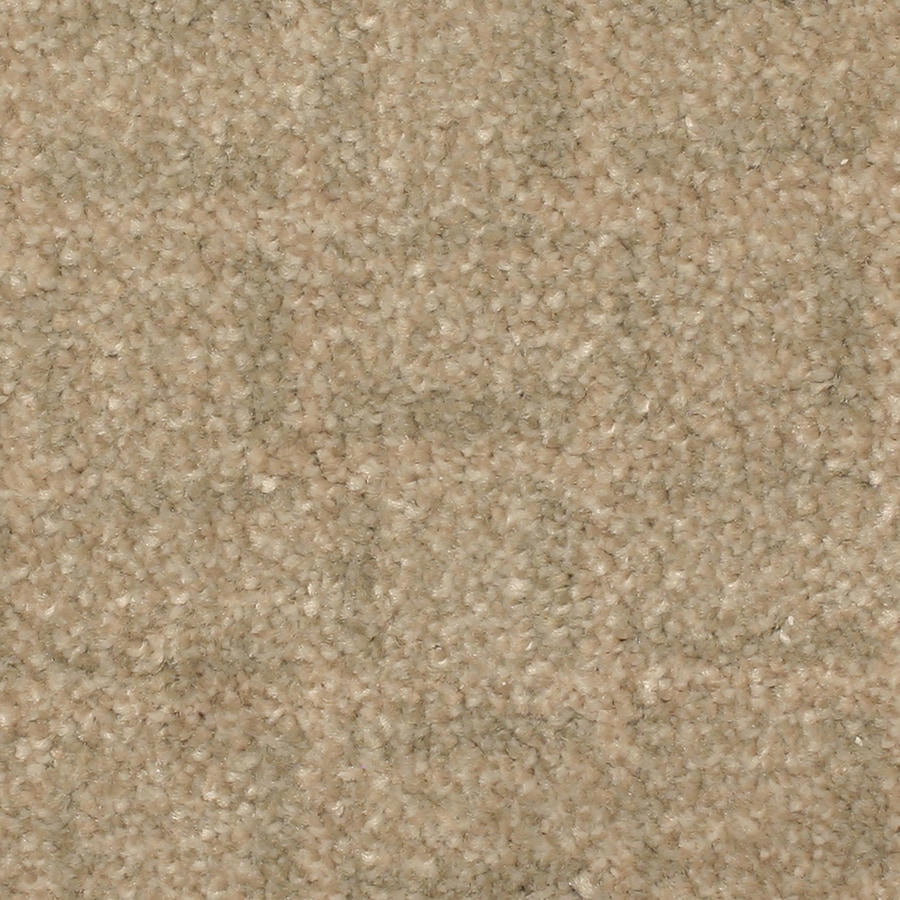 STAINMASTER PetProtect Topsail Bay View Pattern Indoor Carpet