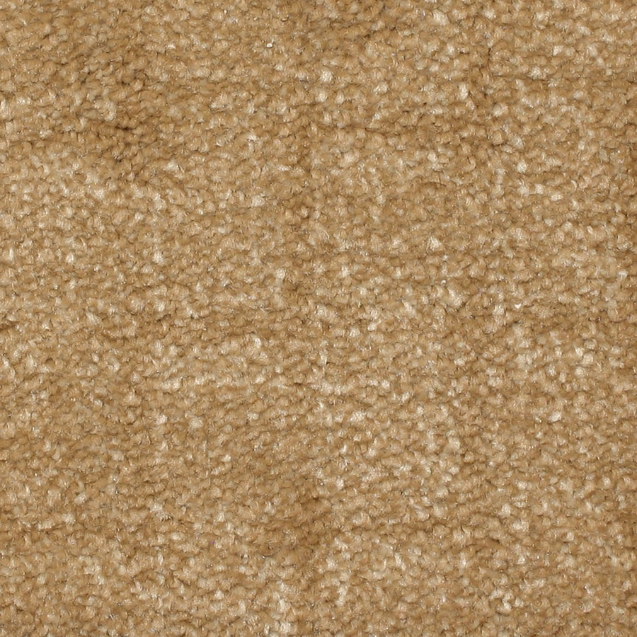 STAINMASTER PetProtect Topsail Cove Pattern Indoor Carpet