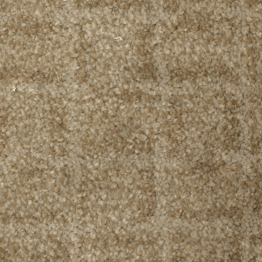 STAINMASTER PetProtect Topsail Inlet Pattern Indoor Carpet