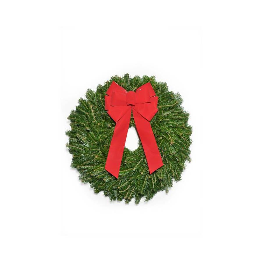 22-in Fresh-Cut Fraser Fir Christmas Wreath