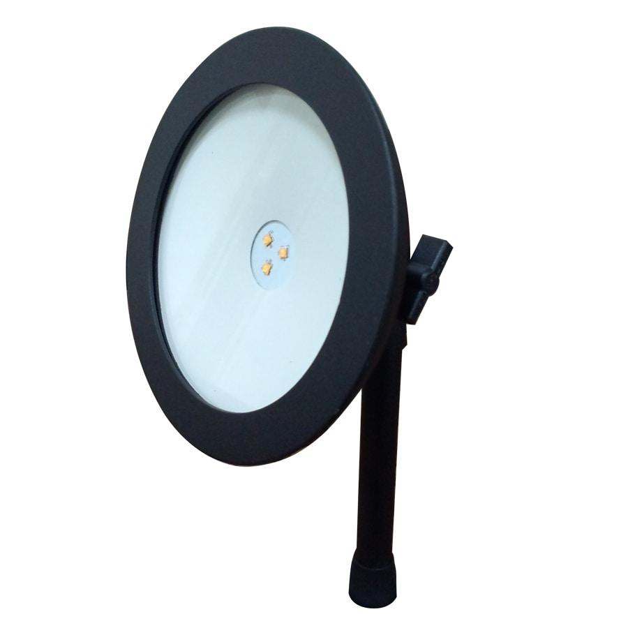 Portfolio Spot Light