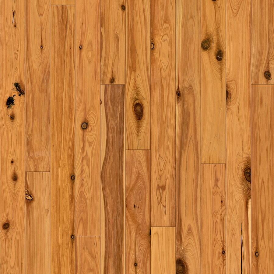 Natural Floors by USFloors Exotic 3.5-in Natural Australian Cypress Hardwood Flooring (16.41-sq ft)